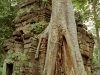 cambodia02
