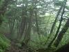 hiking04