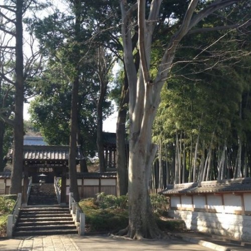 経堂のお寺