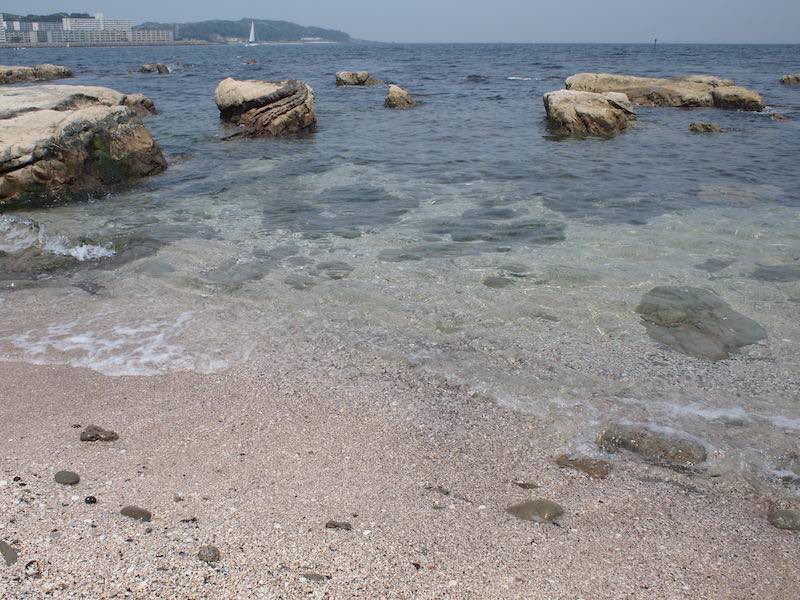 西浦賀の海