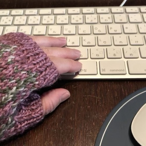 ひーちゃんの指なし手袋01