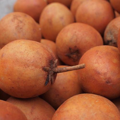 ラオスの梨