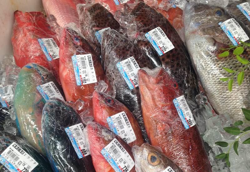 奄美大島のスーパーの魚売場
